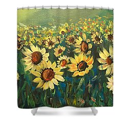 Sunflower Field Shower Curtain by Dorothy Maier