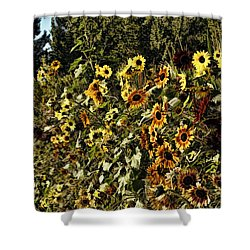 Sunflower Fields Forever Shower Curtain by Peggy Hughes