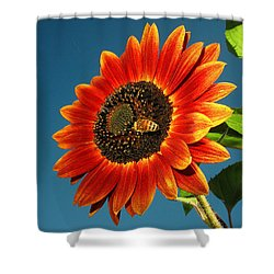 Shower Curtain featuring the photograph Sunflower Honey Bee by Joyce Dickens