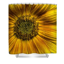 Sunflower In Oil Paint Shower Curtain