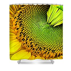 Sunflower Kaleidescope Shower Curtain