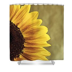 Sunflower Shower Curtain by Lana Enderle