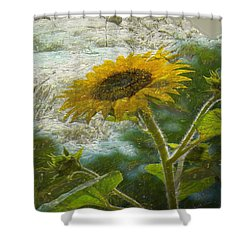 Sunflower Mountain Shower Curtain
