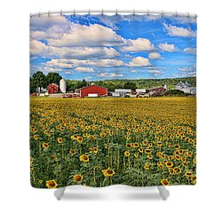 Sunflower Nirvana 17 Shower Curtain