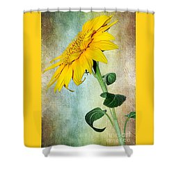 Sunflower On Textured Canvas Shower Curtain by Kaye Menner