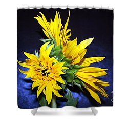 Sunflower Portrait Shower Curtain