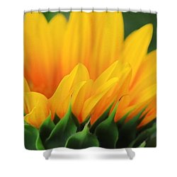 Sunflower Profile Shower Curtain