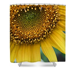 Sunflower Smiles Shower Curtain by Julie Andel