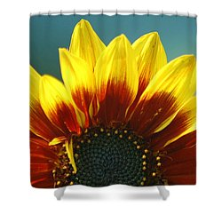 Shower Curtain featuring the photograph Sunflower by Tam Ryan