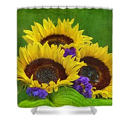 Sunflower Trio Shower Curtain