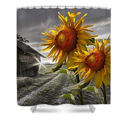 Sunflower Watch Shower Curtain