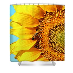 Sunflower With Bee - Photo Shower Curtain by Susan Schroeder