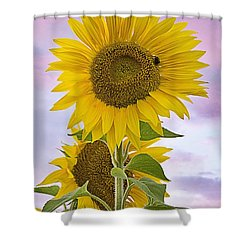 Sunflower With Colorful Evening Sky Shower Curtain