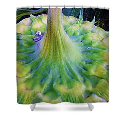 Shower Curtain featuring the photograph Sunflower...moonside 1 by Daniel Thompson