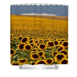 Sunflowers And Airports Shower Curtain