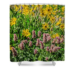 Sunflowers And Horsemint Shower Curtain by Sue Smith