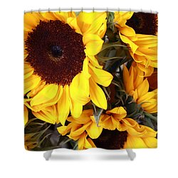 Shower Curtain featuring the photograph Sunflowers by Dora Sofia Caputo Photographic Art and Design