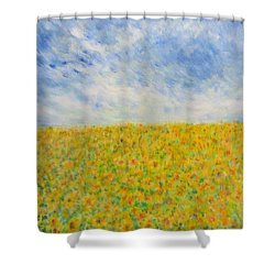 Sunflowers  Field In Texas Shower Curtain
