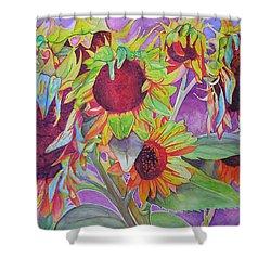Sunflowers Shower Curtain by Joshua Morton
