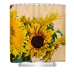 Sunflowers On Old Paper Background Art Prints Shower Curtain