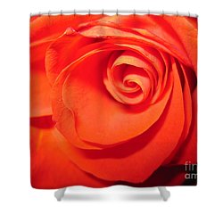 Sunkissed Orange Rose 9 Shower Curtain