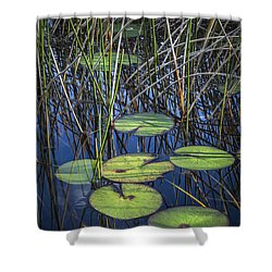 Sunlight On The Lilypads Shower Curtain by Debra and Dave Vanderlaan