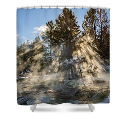 Sunlight Through The Trees 2 Shower Curtain by Sue Smith