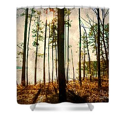 Sunlight Through The Trees Shower Curtain