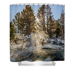 Sunlight Through The Trees Shower Curtain by Sue Smith