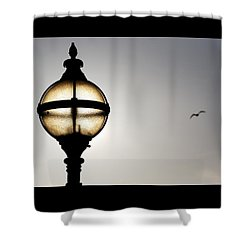 Sunlight Shower Curtain by Wendy Wilton