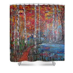 Sunlit Birch Pathway Shower Curtain