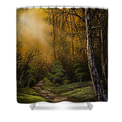 Sunlit Trail Shower Curtain by C Steele