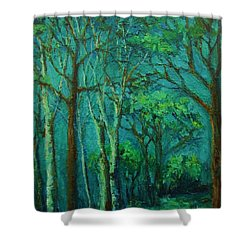Sunlit Woodland Path Shower Curtain