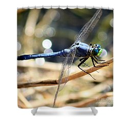Sunning Blue Dragonfly Square Shower Curtain by Carol Groenen