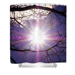 Shower Curtain featuring the photograph Sunny Afternoon by Sherman Perry