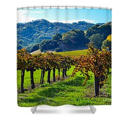 Sunny Autumn Vineyards Shower Curtain by CML Brown