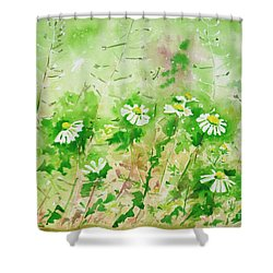 Sunny Daisies Shower Curtain by Zaira Dzhaubaeva