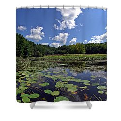 Sunny Day On The Merrimack Shower Curtain by Rick Frost