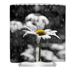 Sunny Disposition Despite Showers Shower Curtain