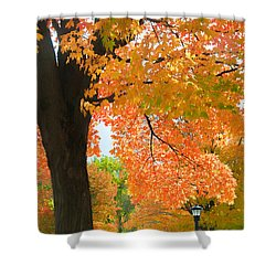 Sunny Fall Day By David Lawrence Shower Curtain