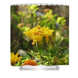 Sunny Marigold Shower Curtain