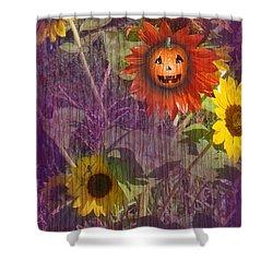 Sunny Pumpkin Shower Curtain by Audra D Lemke