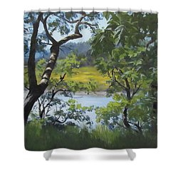 Sunny River Shower Curtain by Karen Ilari