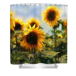 Sunny-side Up Shower Curtain by Colleen Taylor