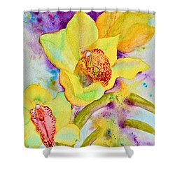 Sunny Splash Of Orchids Shower Curtain by Beverley Harper Tinsley