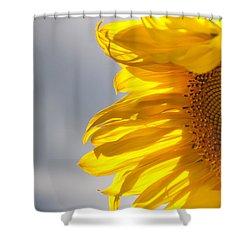 Sunny Sunflower Shower Curtain by Cheryl Baxter