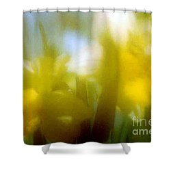 Shower Curtain featuring the photograph Sunny Yellow Daffodils by Michael Hoard
