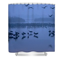 Sunrise Over The Hula Valley Israel 4 Shower Curtain by Dubi Roman