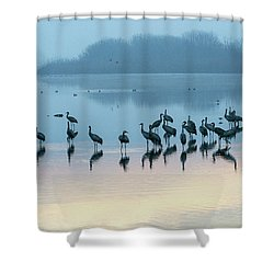 Sunrise Over The Hula Valley Israel 5 Shower Curtain