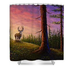 Sunrise Buck Shower Curtain by C Steele